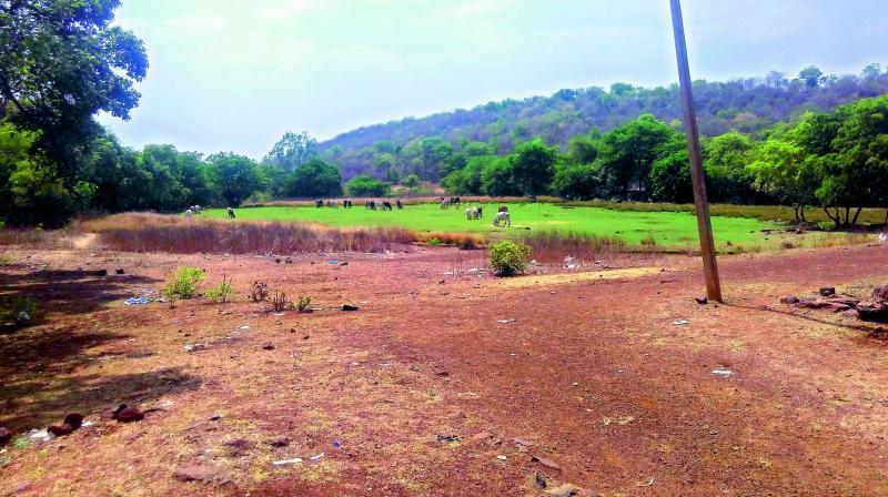 Telangana: Vikarabad forest under threat