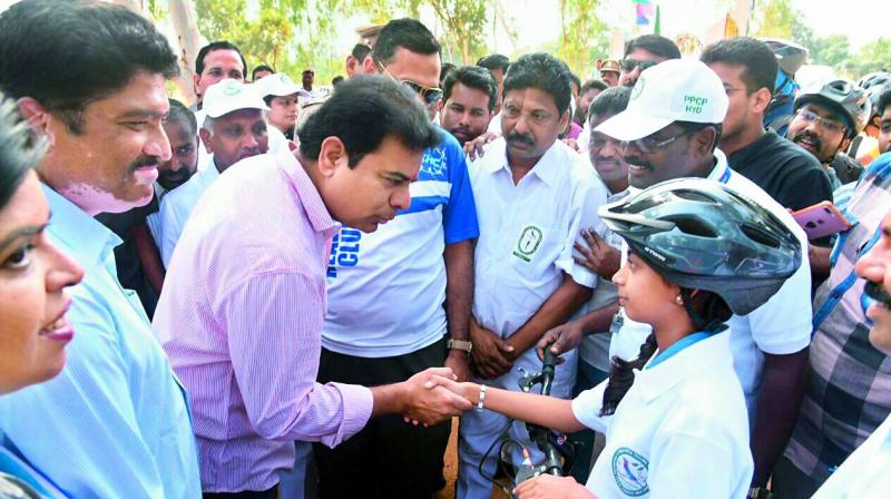 K T Rama Rao happy for sapling he planted growing well
