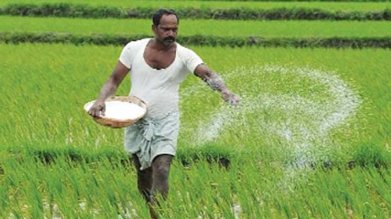 Hyderabad: 'Smart' farming is the way ahead, say experts