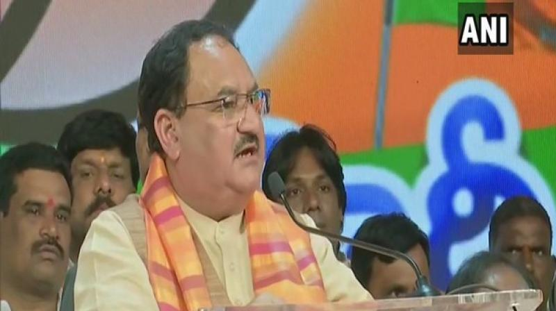 BJP will elect its national president before December 31,' says J P Nadda